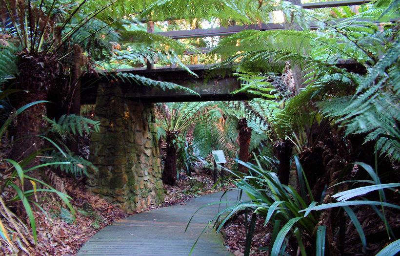 Australian National Botanic Gardens Garden Ftempo